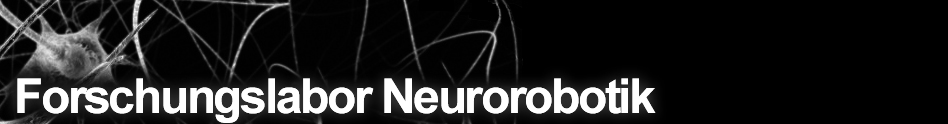 Neurorobotics Research Laboratory